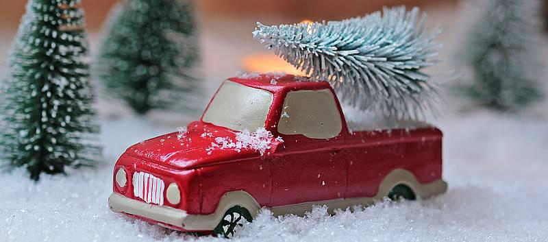 Weihnachtsbaum Ab Wann.Wir Holen Ihren Weihnachtsbaum Ab